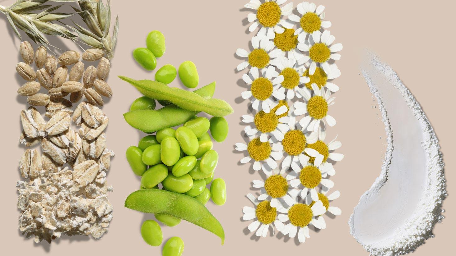 AVEENO® natural skin care ingredients