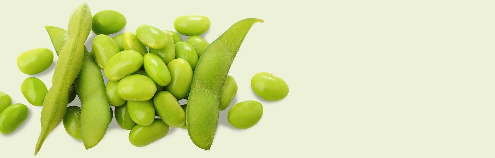 AVEENO® soy skin care ingredient