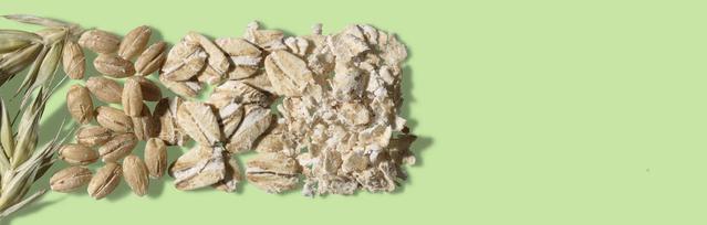 AVEENO® Oat skin care ingredient